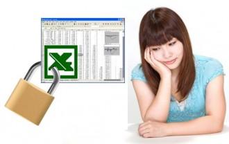 Excel  パスワード 忘れた